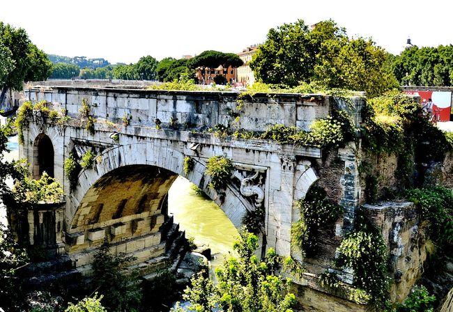 Streetphotography Rome Nature Getting Inspired Firstphotoday Urbanphotography Bridge Power Landscape Nikon
