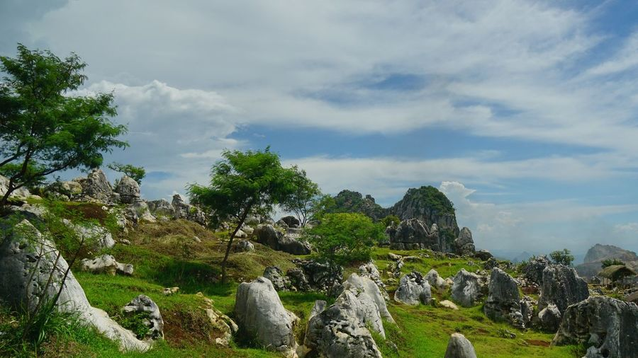 Limestone and karst topography landscape Photography By Arif Wibowo Photography By @jgawibowo Photography By Jgawibowo Scenics INDONESIA Like Like4like Travel Destinations Landscape Landscape Photography Limestone Limestone Rocks Exploreindonesia Exploremore Tree Sky Cloud - Sky Green Color Rocky Mountains Countryside