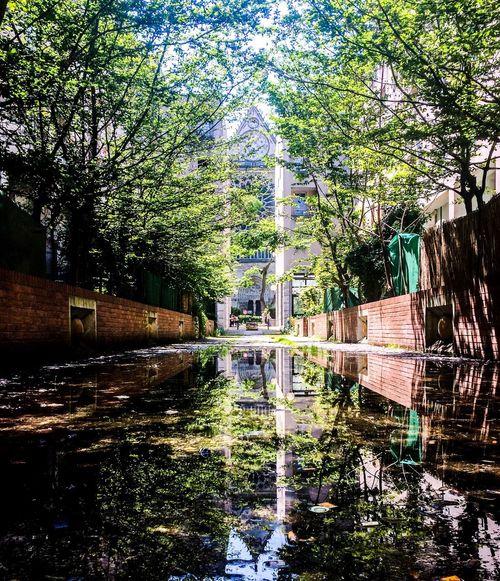 Walking Around in Saint-Denis | Reflection Basilica Nature Enjoying Life IPhoneography AMPt_community Streetphotography