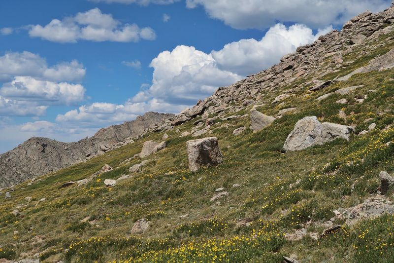 Landscape of the side of a mountain at 14,000 feet along the mount evans scenic byway in colorado