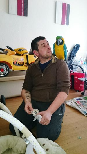 Sitting Only Men Pride Indoors  Parrot❤