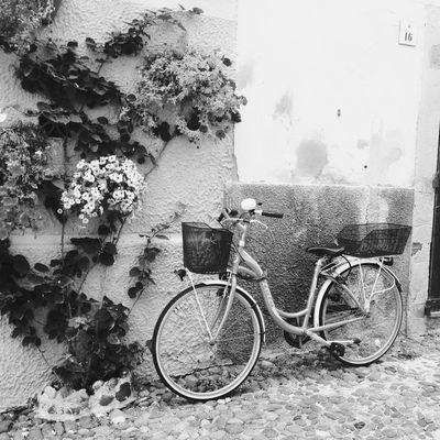 Bikes in Alghero NEMstreet Amptcommunity_street Hipstamatic EyeEm Bnw