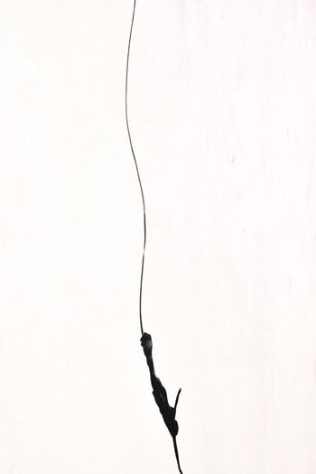 Bungeejump Cable Close-up Low Angle View Outdoors Shadow Silhouette Studio Shot