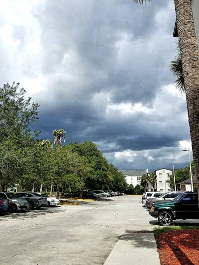 The Wrath of God Cloud - Sky Car Tree Sky No People Day Outdoors Sunlight Shadow Storm Cloud City Water Palm Tree Nature Nature God Wrath Of God? Wrath Of God Wrath Storm Florida Orlando Clouds Hurricane Scenics
