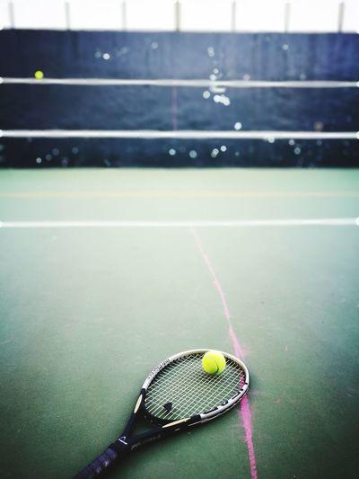 Tennis Ball Examinations NCKU Sport