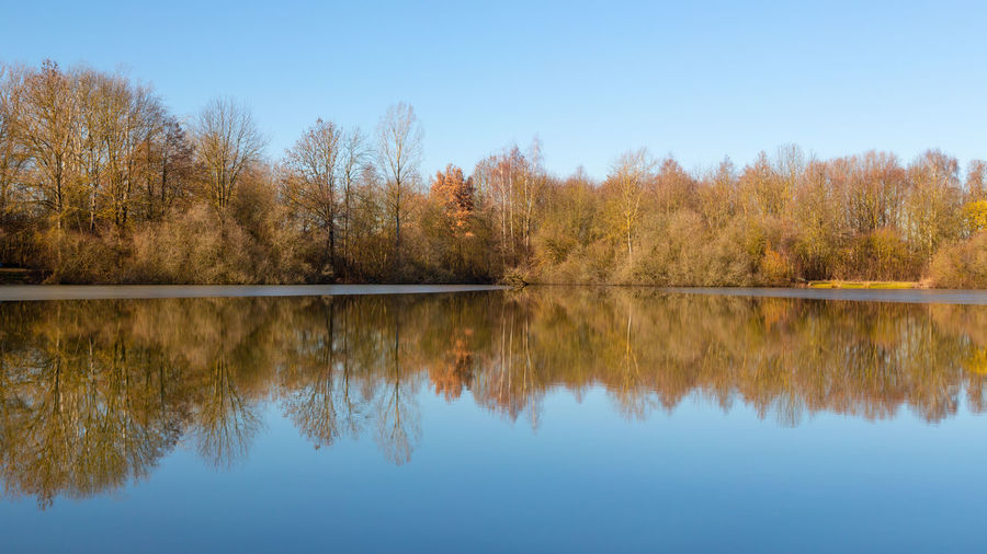 Reflection Tree Water Plant Lake Tranquility Autumn Waterfront Beauty In Nature Sky Nature Change Tranquil Scene Scenics - Nature No People Non-urban Scene Day Idyllic Symmetry Outdoors