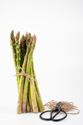 green asparagus infront of a white background   food photography Food Studio Shot Food And Drink White Background Indoors  Green Color Freshness Healthy Eating Bundle Copy Space Still Life Vegetable No People Raw Food Close-up Asparagus Food Photography Foodphotography Nikonphotographer