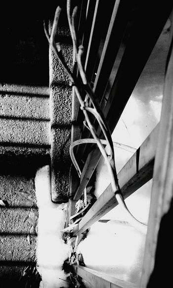 Close-up Outdoors No People Day Light And Shadow Shadow Winter Snow Sunlight Cold Temperature Black And White Outdoor Photography Nature Photography Concrete Steps Railing