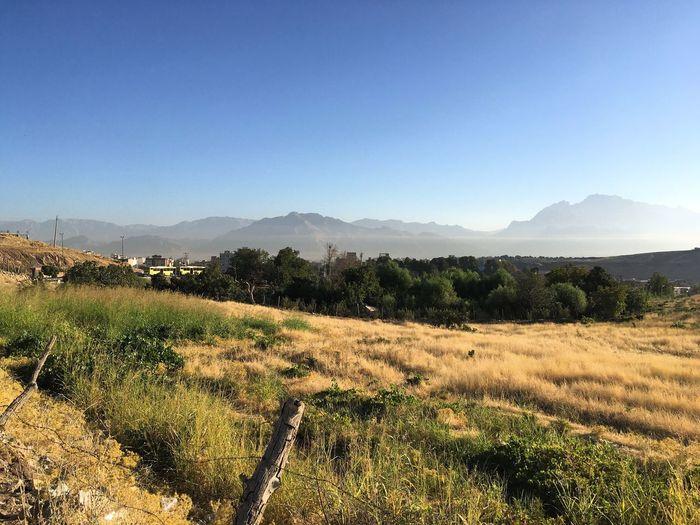 Kermanshah City Iran Nature Morning