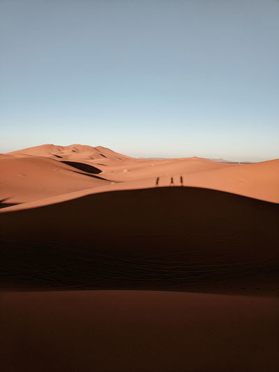 Travel Travel Destinations Travel Photography Morocco Deserts Around The World Desert Sahara Shadow Sand Dune Arid Climate Mountain Accidents And Disasters Full Length Focus On Shadow