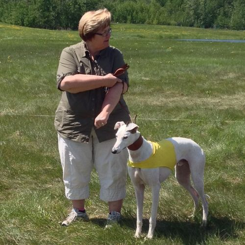 Mom and her puppy Jäger lining up for some lure coursing! Dog Running The Portraitist - 2014 EyeEm Awards Portrait