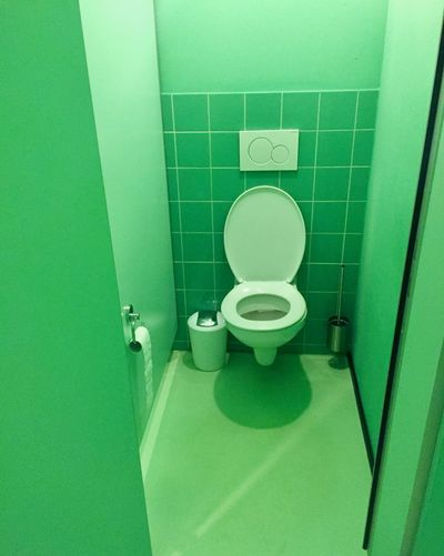 Architecture Bathroom Close-up Convenience Day Domestic Bathroom Flushing Toilet Green Color Hygiene Indoors  No People Public Building Public Restroom Toilet Paper Urinal