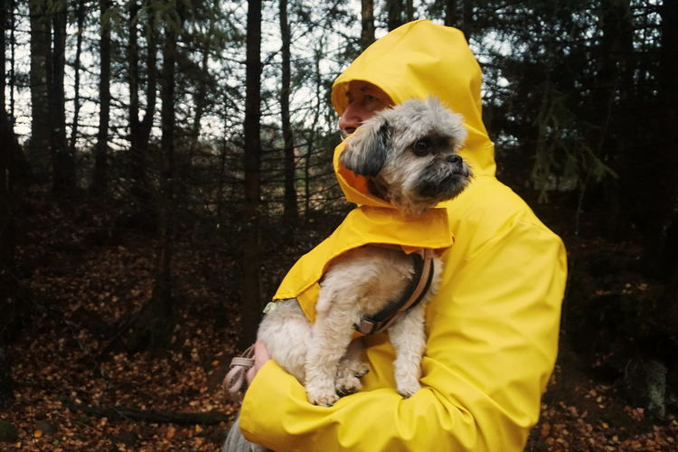 matching Fashion Cute Pets Cute Dog  Dog Animal Themes Rain Rainy Days Raincoat Yellow Portrait People Watching Friendship Togetherness Pets Friendship Retriever Forest Yellow Dog Happiness Puppy Purebred Dog Pet Equipment Leash Pet Collar Pampered Pets Mixed-breed Dog Loyalty Pet Clothing Panting Autumn Mood
