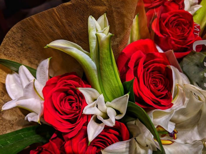 Those beautiful red roses. Roses Lily Lillies Wite Flowers Angle Flower Head Flower Bouquet Red Rose - Flower Variation Petal Multi Colored Close-up