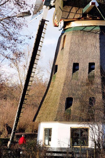 Windmill Architectural Detail Shadows & Lights Caretaker