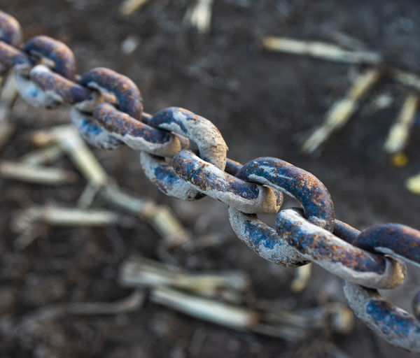 Close-up of rusty chain on field