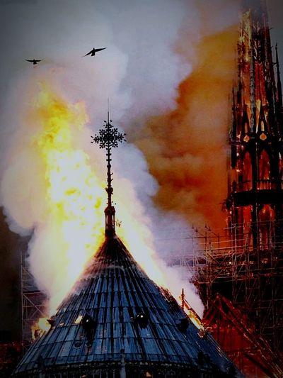 """Notre-Dame """"Adora quod incendisti, incende quod adorasti!!"""" (Remigius) zu deutsch """"Bete an, was du verbrannt hast; verbrenne, was du angebetet hast."""" Inferno Fire Notre Dame De Paris Flying Airshow Sky Architecture Smoke Stack Smoke Fumes"""