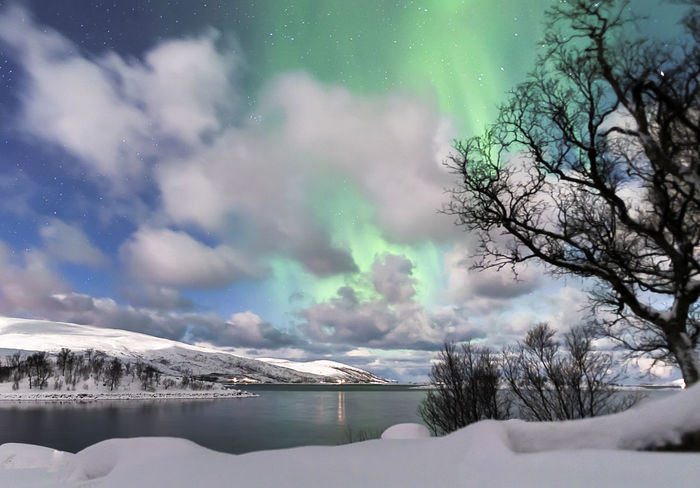 Aurora Borealis Northern Lights Norway Tromsø Beauty In Nature Cold Temperature Day Iceberg Lake Mountain Nature No People Outdoors Polar Night Scenics Sky Snow Tranquil Scene Tranquility Tree Water Waterfront Winter