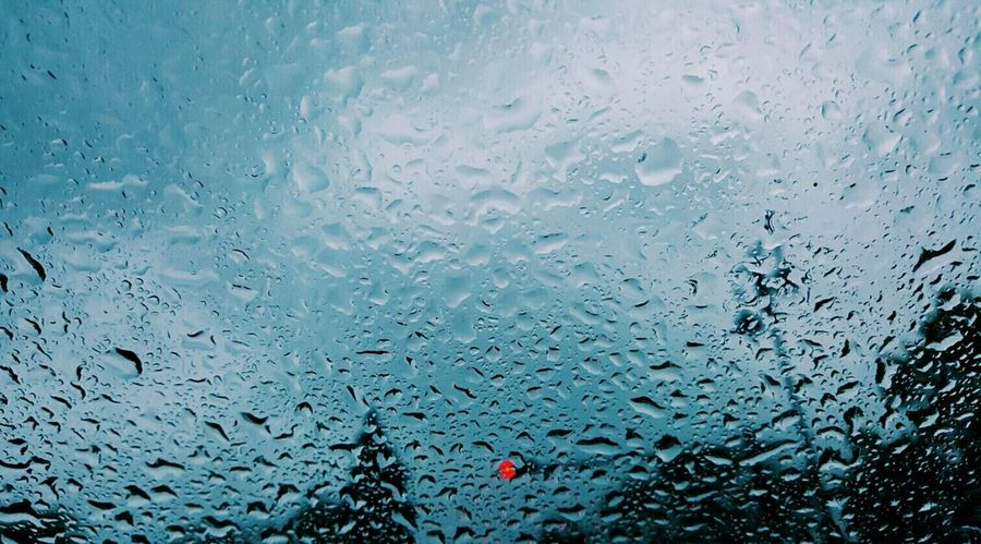 Pluviophile Rain
