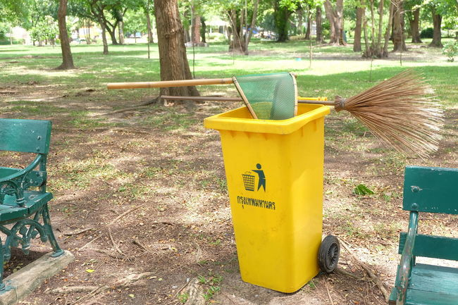 swab and recycle bin in park Broom Besom Chatuchak Chatuchak Park Clean Day Equipment Garden Outdoors Park Plant Swab Tree Tree Yellow