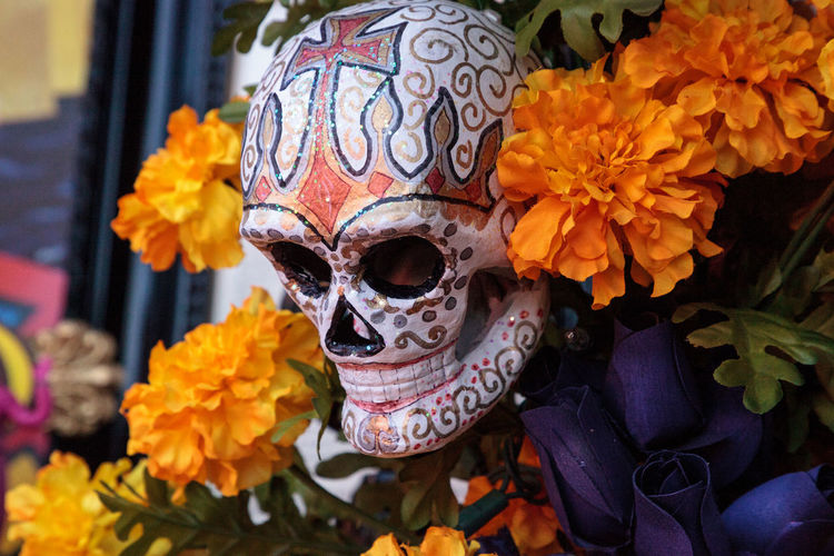 Flower and skeleton alter at Dia de los Muertos, Day of the dead. Celebration Day Of The Dead Decor Dia De Los Muertos Halloween Holiday Macabre Skeleton All Saints Day Alter Decoration Flower Macabre Art Offering Offerings Scary Skull