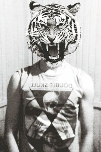 Capa Filter Tiger Boy Detailsofmylife