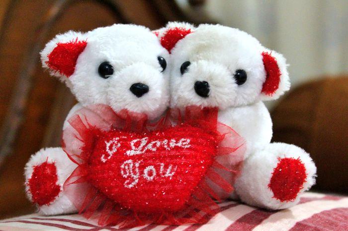 Tedy Bear. captured by me :) Like my page: w ww.facebook.com/faizy.clixs Faizy.clixs Tedybear Tedy Bear ❤ My Photography Cute Photography Toys Toysphotography Love Love You💋