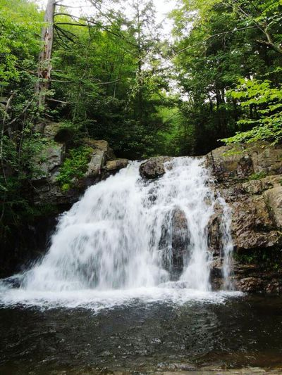 Waterscape Waterfall_collection Chasing Waterfalls Watching Waterfalls Love Waterfalls Hunting Waterfalls Beautiful Waterfall EyeEm Pennsylvania