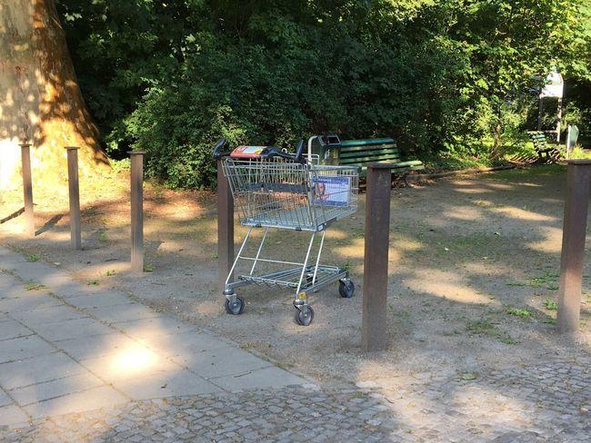 I Found A Shopping Cart