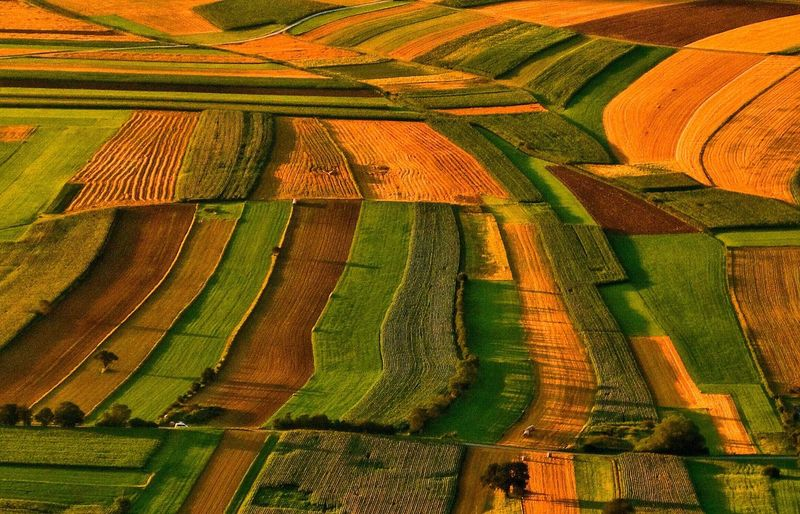Agriculture Rural Scene Farm Field Landscape No People Growth Scenics Nature Beauty In Nature Aerial View Outdoors Patchwork Landscape Backgrounds Day A Photo Like A Painting Daily Inspiration Capture The Moment Vienna Alps Austria Beautifully Organized EyeEm Selects EyeEm Selects