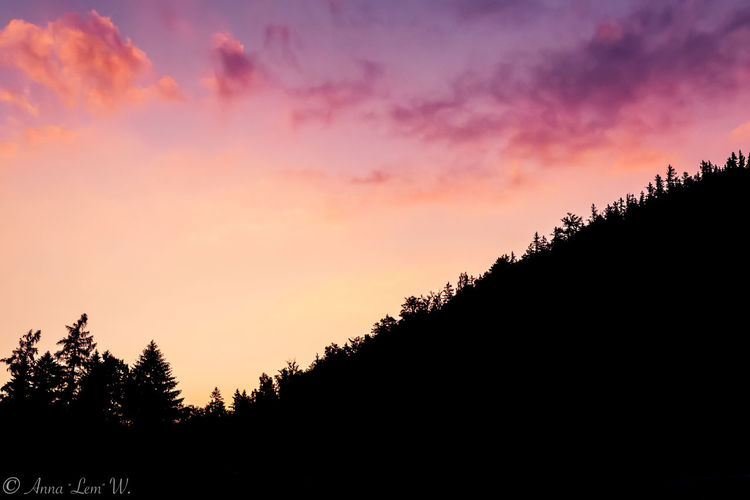 Beautiful purple sky above a hill. Silhouette Sky Sunset Tree Beauty In Nature Tranquility Nature No People Plant Cloud - Sky Orange Color Tranquil Scene Scenics - Nature Growth Idyllic Non-urban Scene Forest Copy Space Land Outdoors Romantic Sky The Week on EyeEm EyeEmNewHere EyeEm Masterclass EyeEm Nature Lover