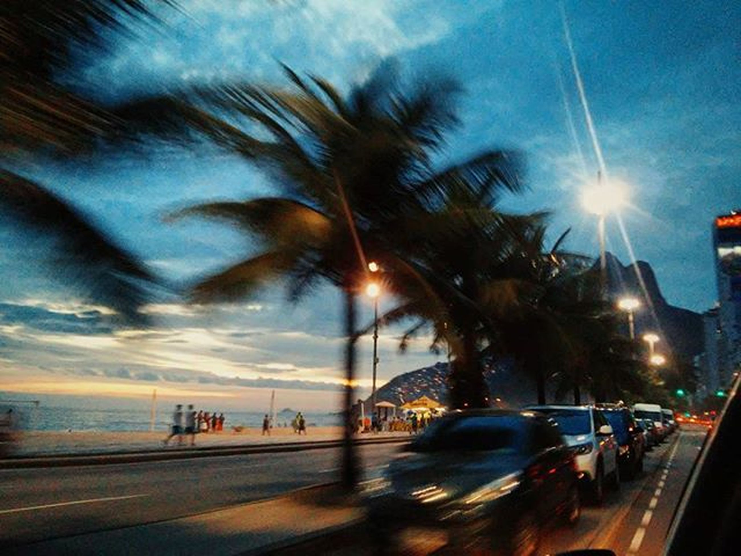 transportation, car, land vehicle, road, sky, mode of transport, street, sun, sunset, cloud - sky, sea, street light, sunbeam, palm tree, on the move, sunlight, city, traffic, travel, motion