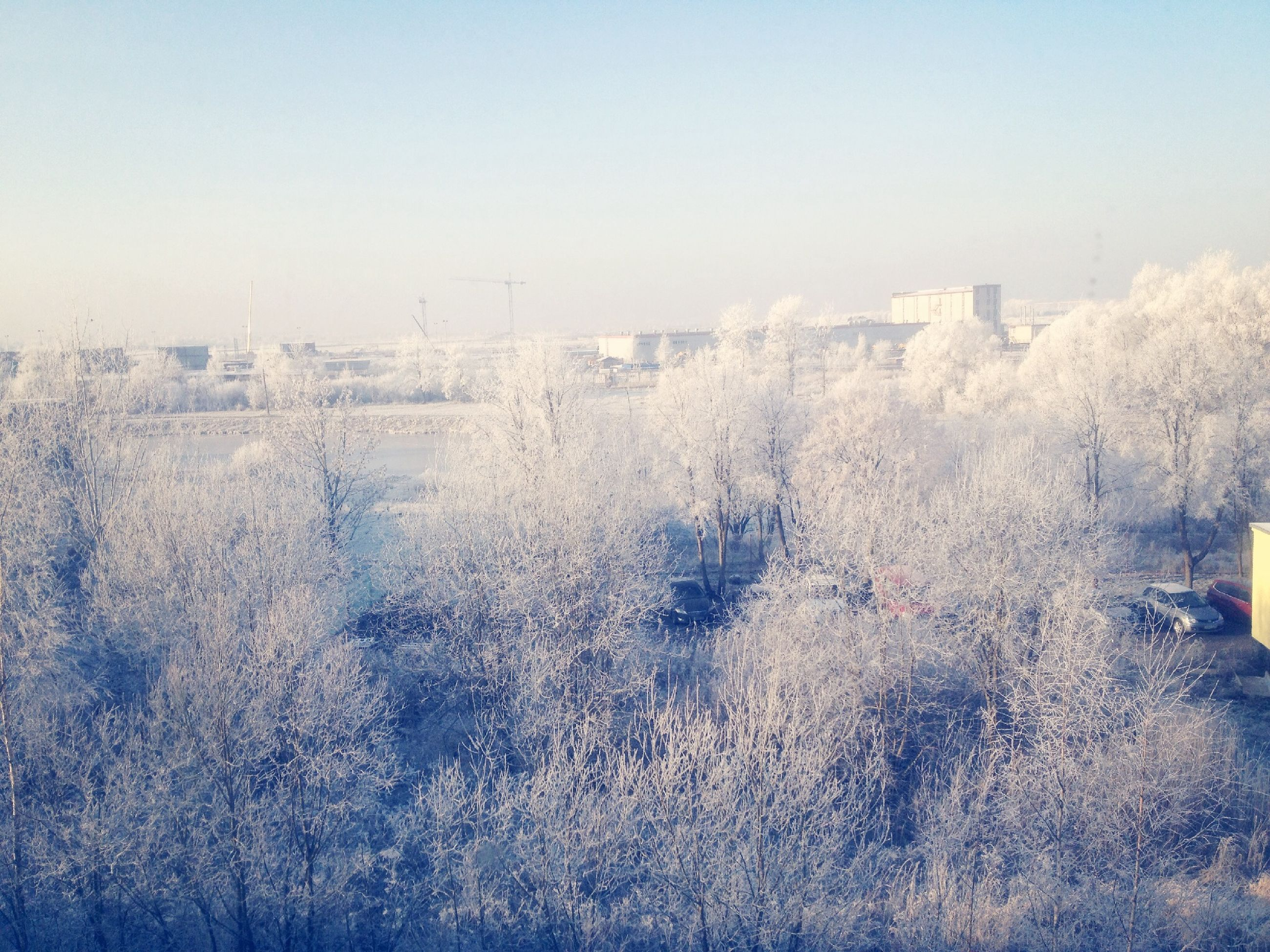 clear sky, building exterior, architecture, built structure, winter, cold temperature, copy space, snow, field, city, weather, season, tree, foggy, landscape, bare tree, day, nature, outdoors