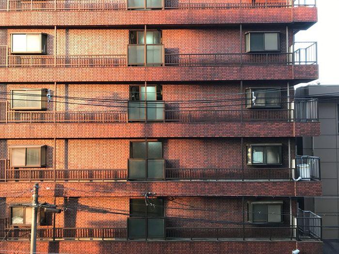朝日を受けて目覚めた左と 未だ夢うつつの右 Architecture Building Exterior Built Structure Building Window No People Day