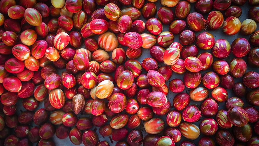 Directly above shot of nutmeg seeds at market stall