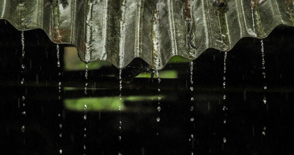 Low angle view of wet umbrella