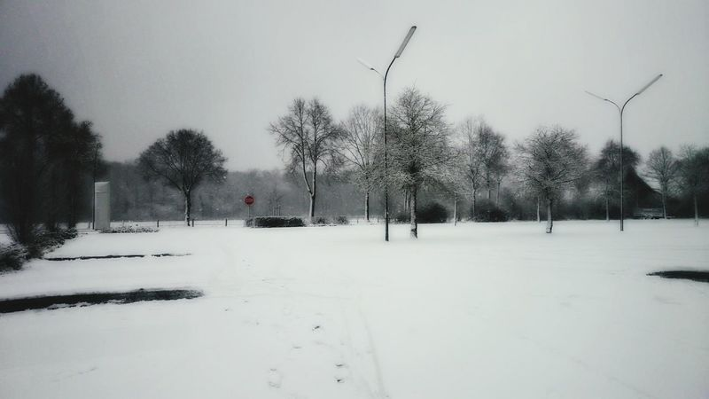 How's The Weather Today? Snow Snowing Landscape_Collection Landscape Nature Nature_collection Silhouette Taking Photos