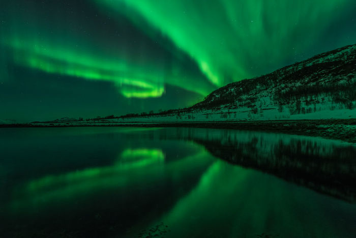 Northern lights with a beautiful reflection in Dafjord Aurora Borealis Northern Lights Astronomy Aurora Polaris Beauty In Nature Cloud - Sky Cold Temperature Dramatic Sky Fjord Green Color Illuminated Landscape Mountain Nature Night No People Reflection Scenics Sky Snow Star - Space Tranquil Scene Tranquility Water Winter