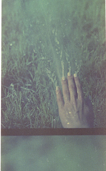 Close-up of hand on grass