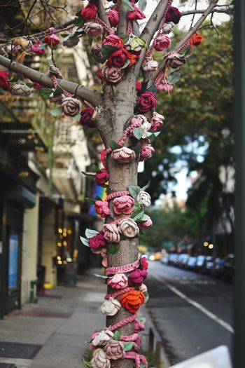 No People Focus On Foreground Hanging Outdoors Day Close-up Tree Flower NYC Street NYC NYC Street Photography NYC Photography Street Photography Streetphotography Street Art Outdoor Creativity Cotton Flower Fake Flowers Flowers Tree Hanging Flower Collection Streetart Street Fashion