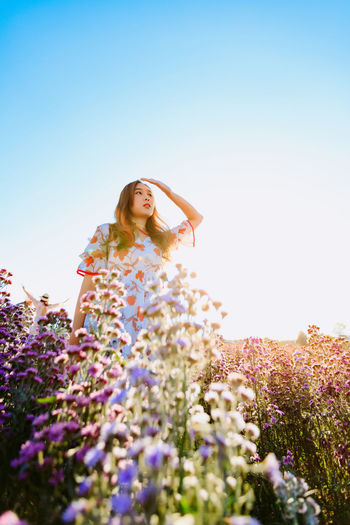 Beautiful pretty woman in a margaret aster flowers fields raise her hand to cover the sunlight