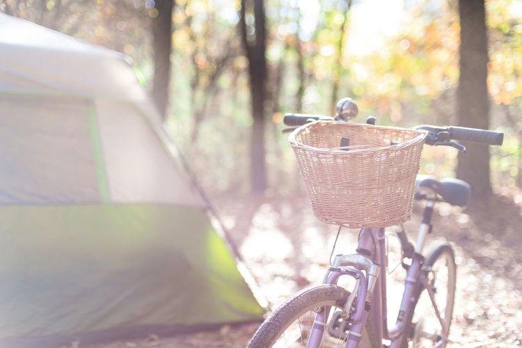 Fall tent