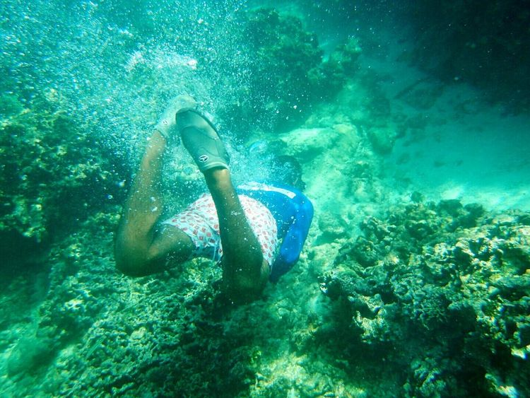 Underwater Exploration Water Snorkeling Beauty In Nature One Person Taking Photos Swimming Islasdelrosario