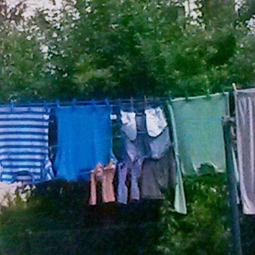 Passende Wäscheklammern Zur Wäsche