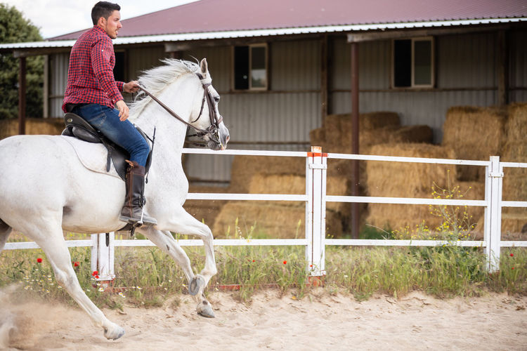 Full length of man riding horse in ranch