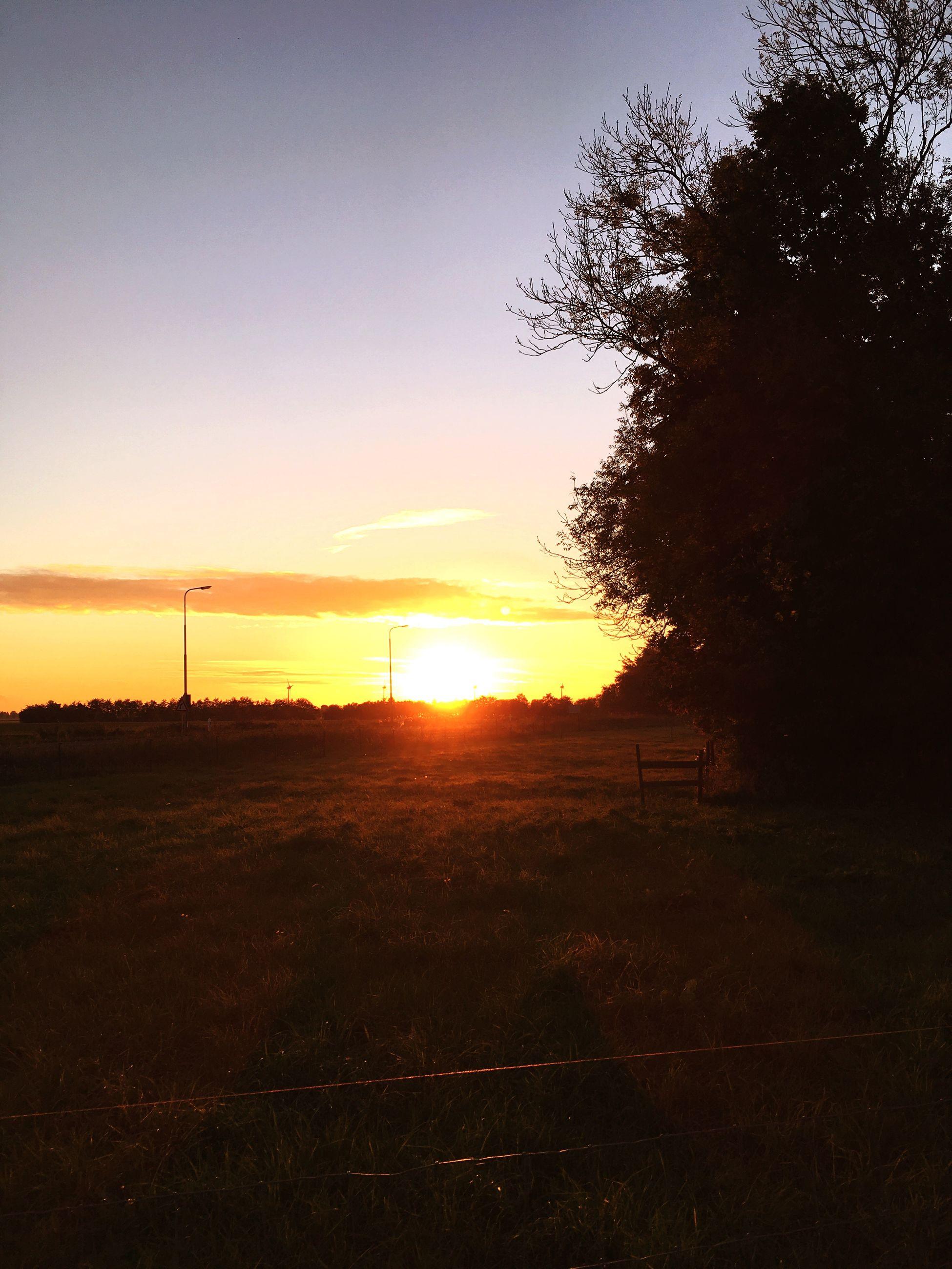 sunset, sun, tranquil scene, tree, landscape, orange color, tranquility, silhouette, scenics, sky, beauty in nature, idyllic, dark, nature, field, outdoors, remote, cloud, solitude, outline, calm, no people, non-urban scene, countryside