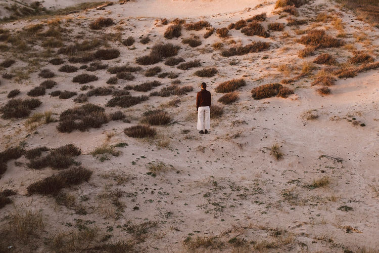 Rear view of man standing on sand