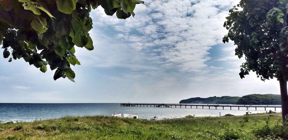 Rügen Binz Seebrücke Sea And Sky Meer Water Relax Bridge New Talents