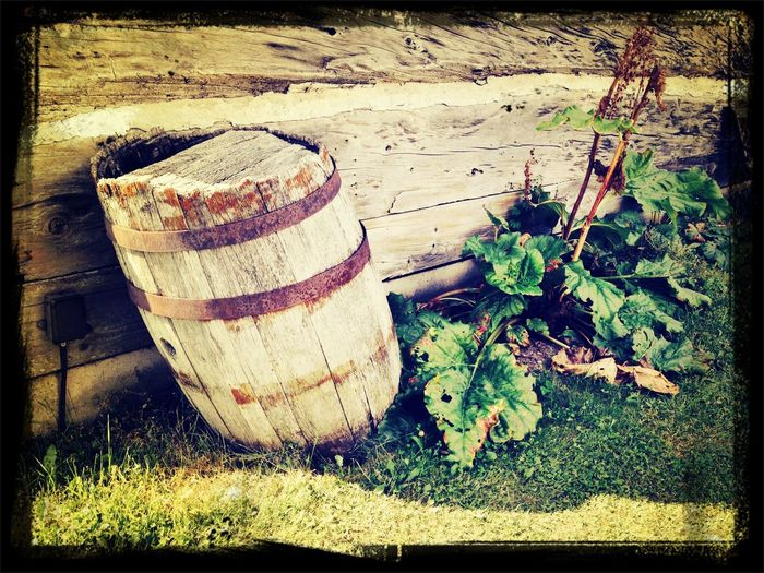 Barrel Antique an old barrel