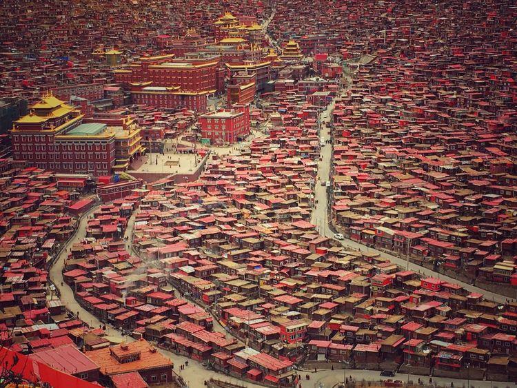 Seda Chinatown